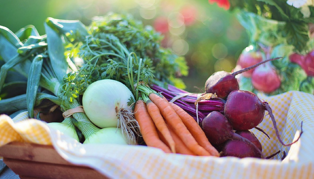 How to Find Fresh Produce in Winter