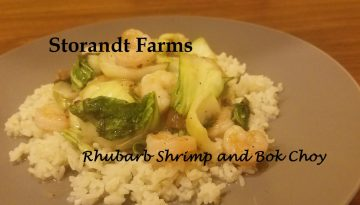 rhubarb shrimp and bok choy edited